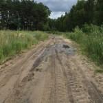 Polish roads